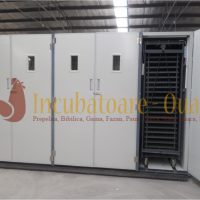 Incubator oua profesional BIM-33792
